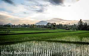 Sunrise near Ubud, Bali