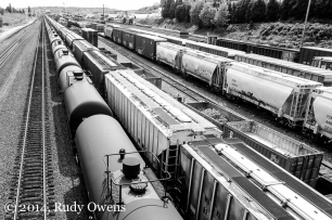 Seattle's pass through rail traffic includes petroleum and chemical products shipped through the BNSF rail hubs in the city. Photo taken April 26, 2014.