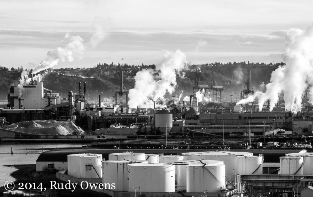 The Port of Tacoma hums with activity on a sunny winter's morning (2014).