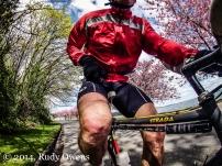 Spring Biking, 3