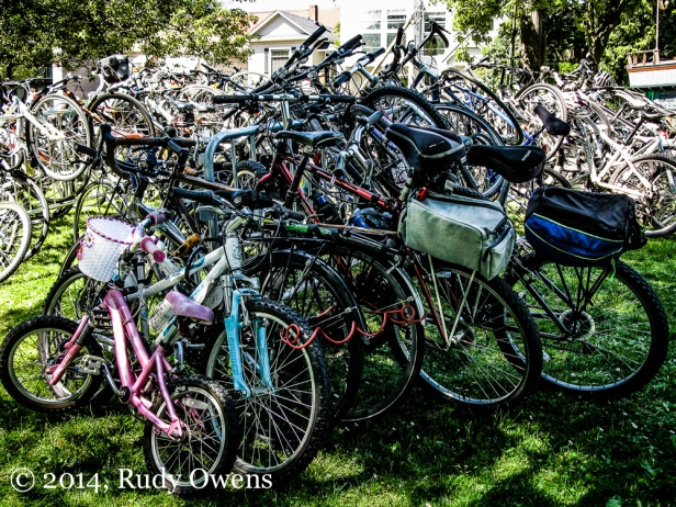 A glut of bikes overtakes the limited number of racks provided for bike commuters at Seattle's Fremont Fair on June 21, 2014.