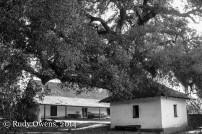 Old Adobes, Santa Rosa Plateau