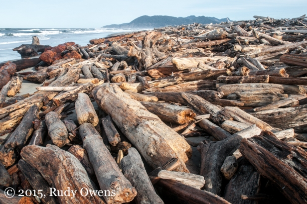 Driftwood piles high on the south end of the beach of Nehalem Bay State Park.