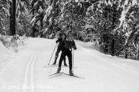 Skate skiing photo