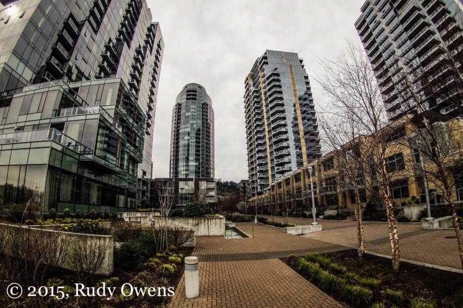 South Waterfront Condos photos