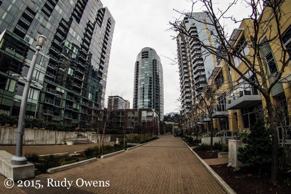 South Waterfront Development Photo