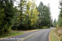 Fox Hollow Road, Lane County, Oregon