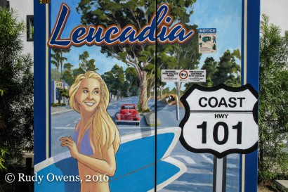 I love this community, which is located in Encinitas.