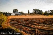 indian Summer Morning, Washington County