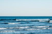 Seaside Surfers in January 2017