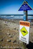Shark warning sign at Seaside, August 2017
