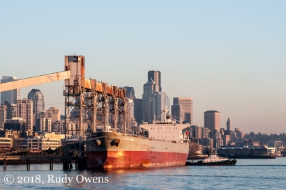 A grain cargo ship at the Port of Seattle
