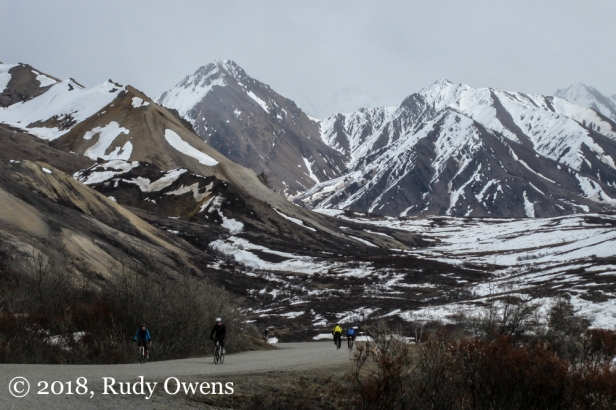 Denali Mt Biking