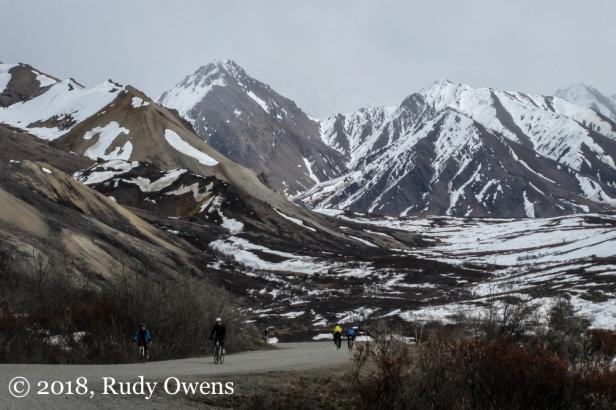 Denali Mt Biking