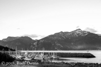 Haines in August