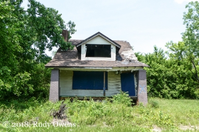 House Going Wild Central Detroit (6-2018)
