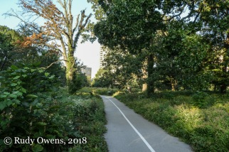Bike and Nature Trail in Forest Park (9-2018)