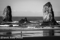 Pinnacles, Cannon Beach, November 2018