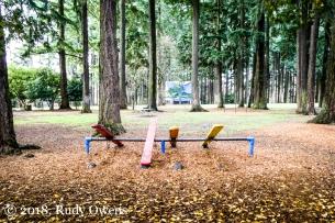 Sellwood Park Fall 2018