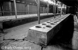 Birkenau Death Camp Toilets