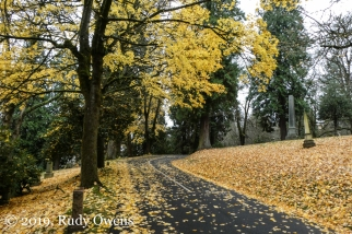 Riverview Cemetery, End of Fall
