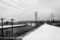 Springwater Corridor Winter February 2021