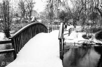 Westmoreland Park Winter Scene February 2021
