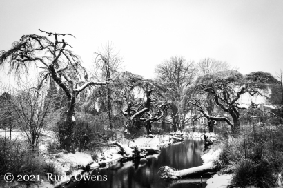 Westmoreland Park Winter 2021